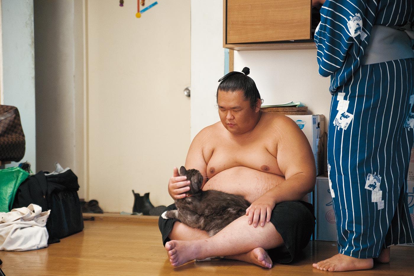 荒汐部屋のモルとムギ』出版記念 猫と力士のあかるい写真展 - ほぼ日刊 ...